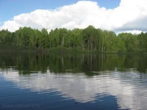 природа на озере Волго