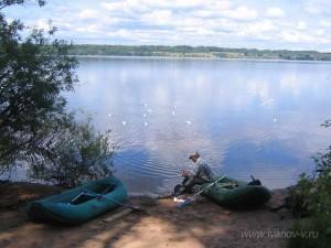 Когда чистим рыбу на озере Волго - прилетают чайки