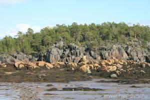 Перейма – перемычка между островами, заливаемая во время прилива