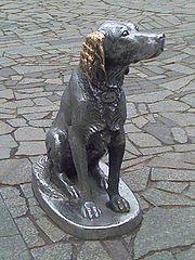 памятник Биму в Воронеже