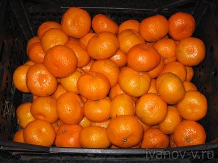 ящик мандаринов