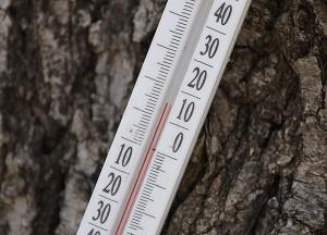температура в начале апреля под Астраханью