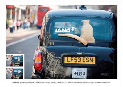 реклама корма для собак