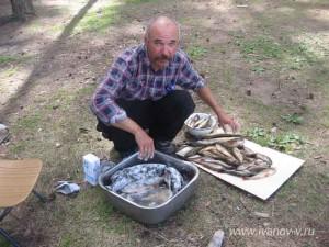 солим рыбу до копчения
