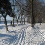 Чудесная зимняя погода