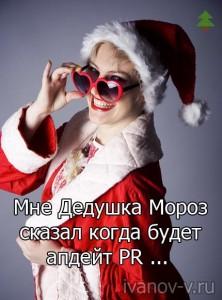 Новогодний гном