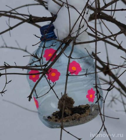 разные кормушки для птиц из бутылок