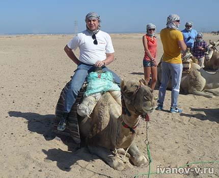прокатиться на верблюде