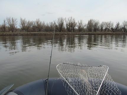 редкий штиль на реке Бузан